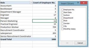 Pivot Table Slicers